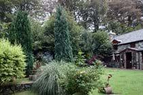 The summer garden P Davidson