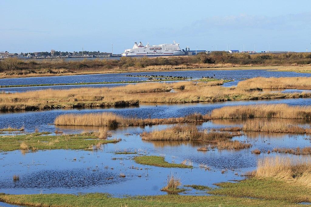 The Orne Estuary, Normandy - une grande biodiversité. Si vous arrivez en Normandie par ferry pour Caen vous arriverez au bord de cet estuaire.   Orne Estuary - Estuaire de l'Orne, Normandie