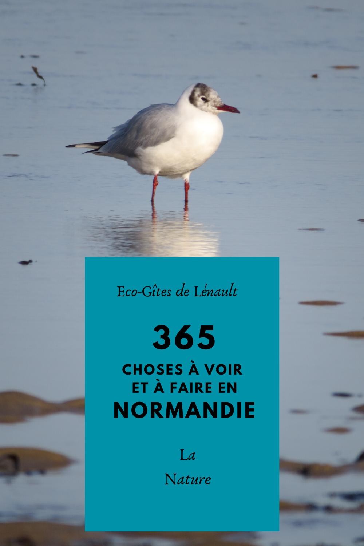 La nature de Normandie