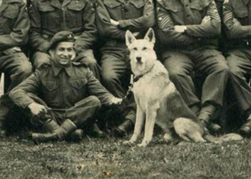 Glen, the paradog who died on D-Day