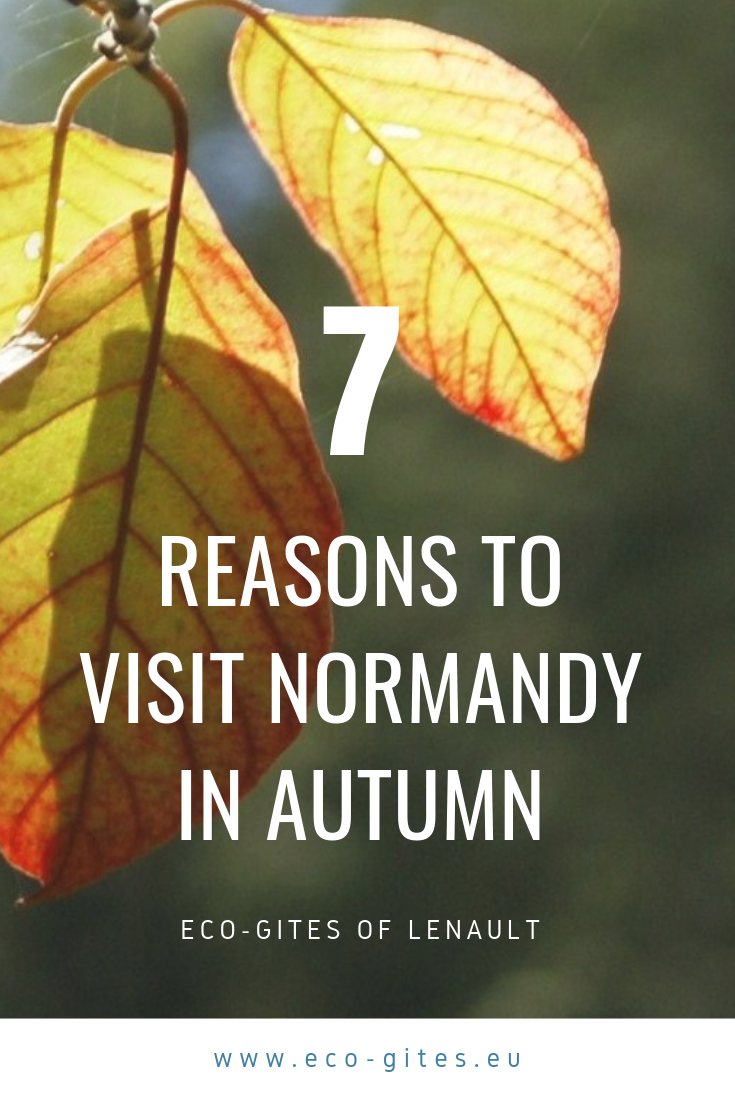 7 reasons to visit NOrmandy in Autumn with Eco-Gites of Lenault