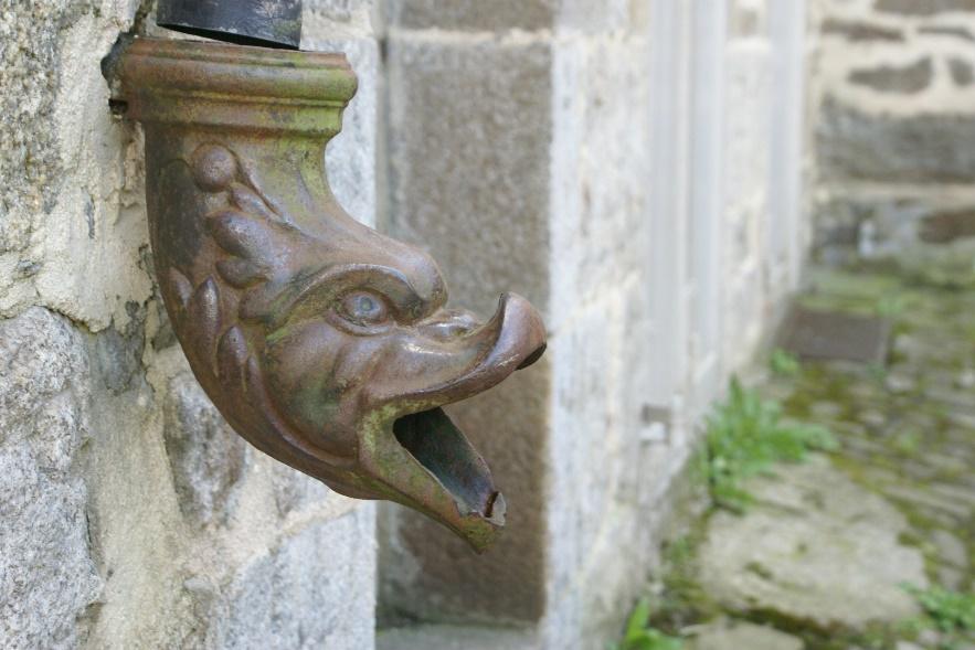 Fish drainpipe in Dinan