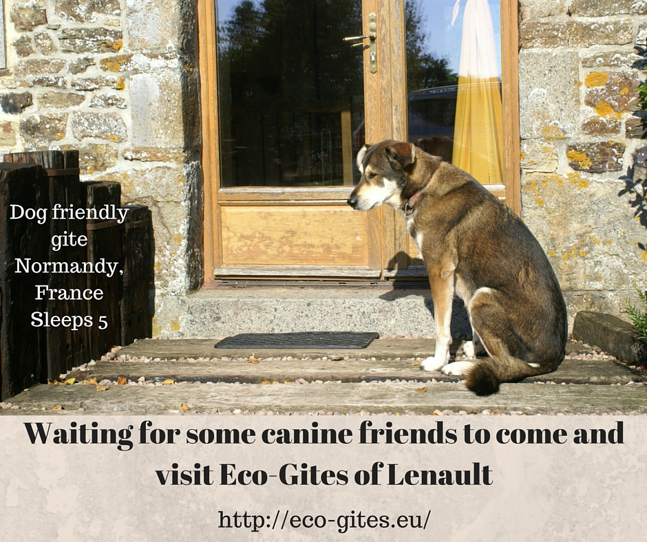 Eco-Gites of Lenault - a dog friendly gite in Normandy