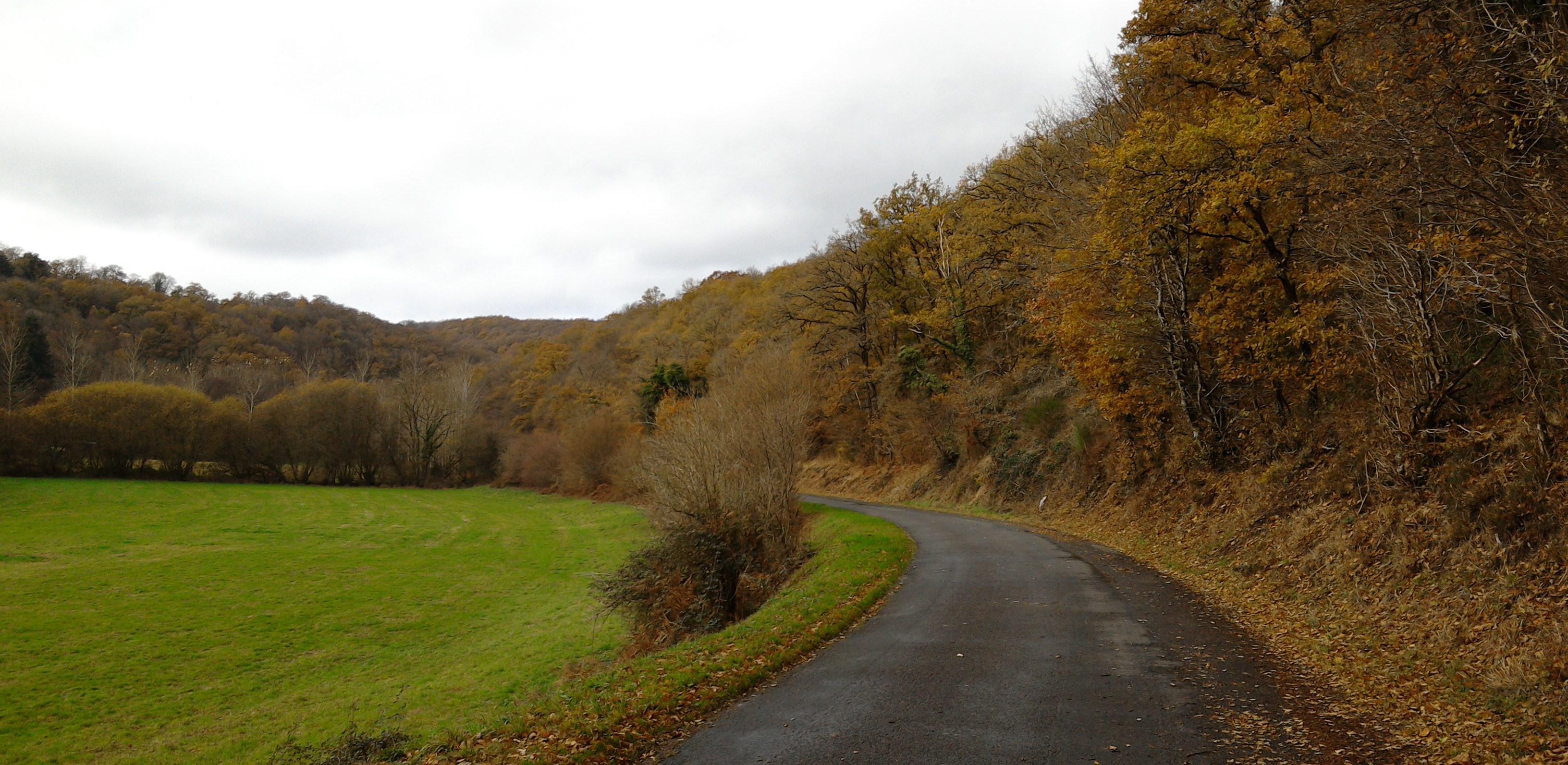 Autumn colour, Pontécolant, Normandy