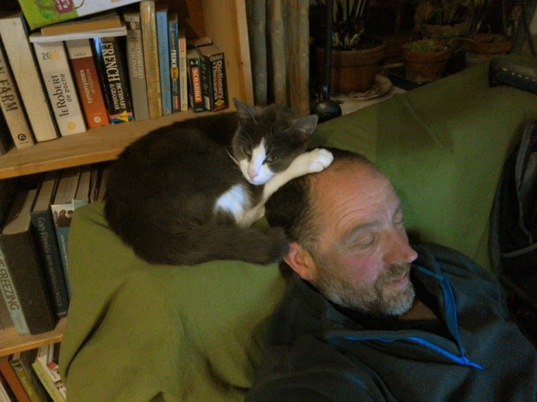 Moo sitting on Simon's head