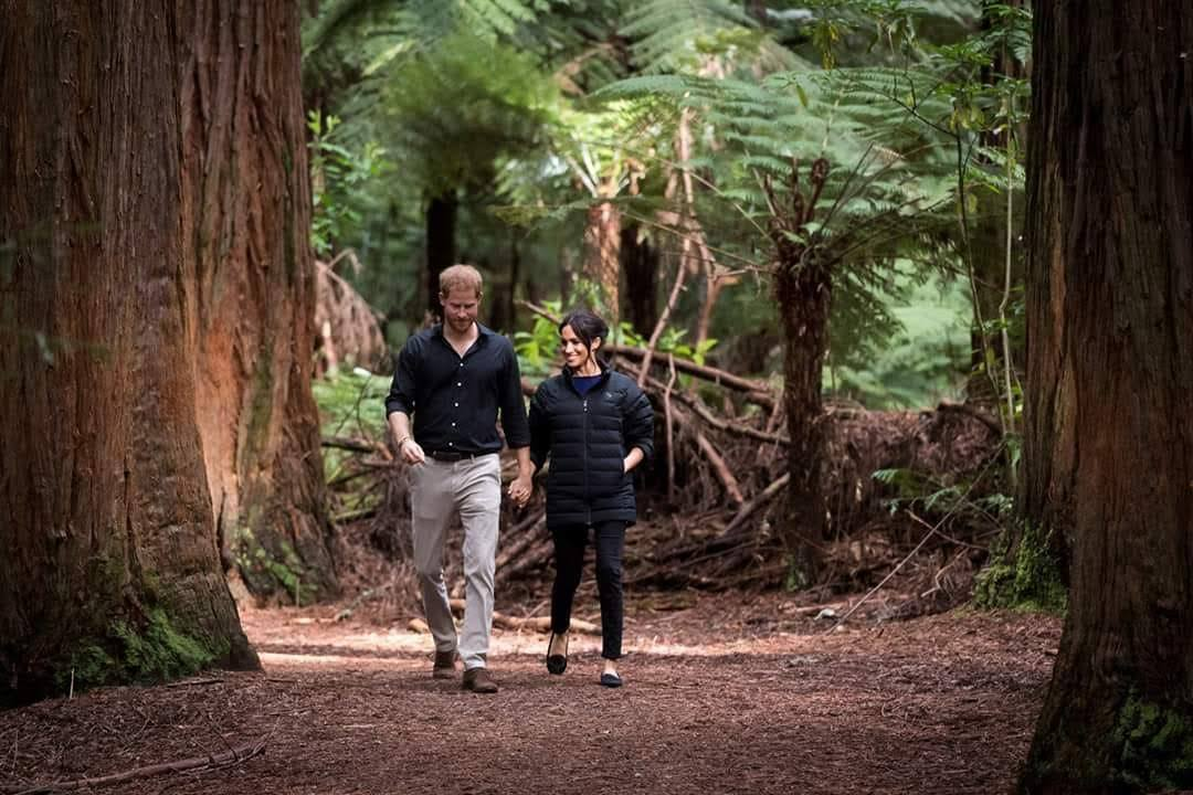 Harry and Meghan visit the redwoods Rotorua