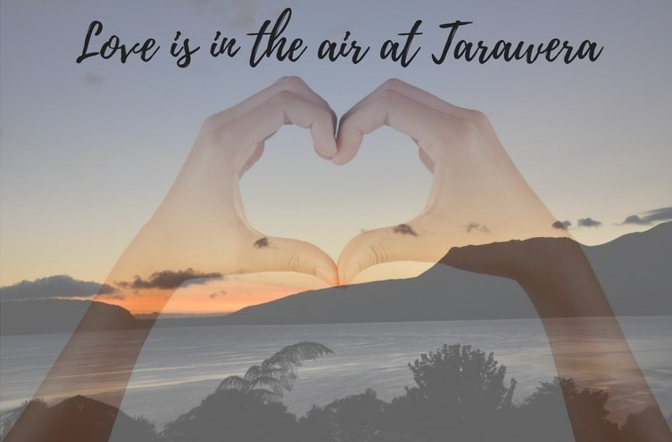 Love in the air at Tarawera