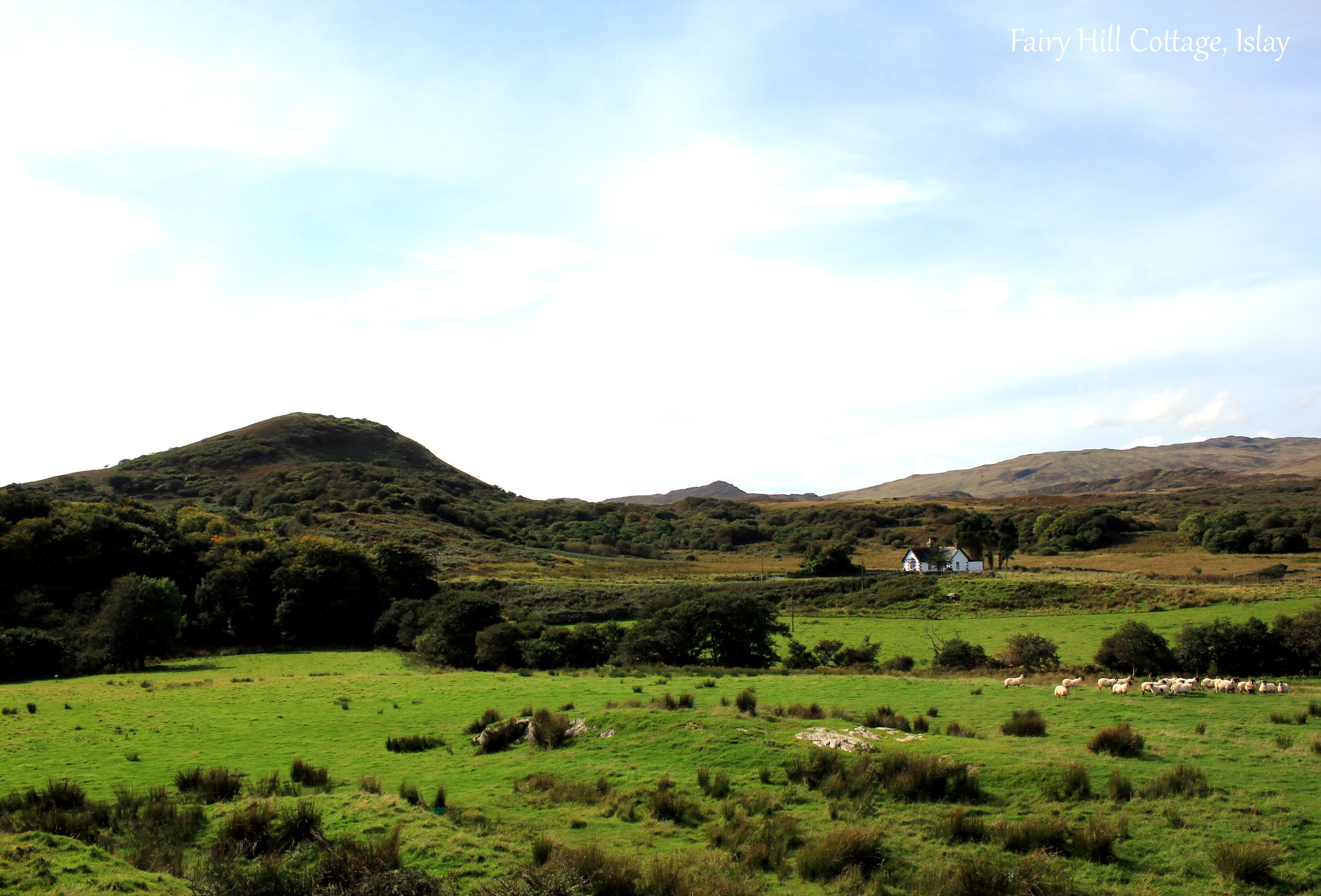 Fairy Hill Cottage landscape