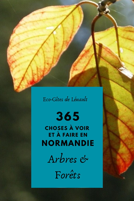 Les arbres et les forêts de la Normandie
