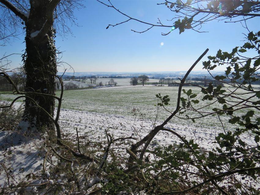 Vue sur la campagne du Calvados, Normandie
