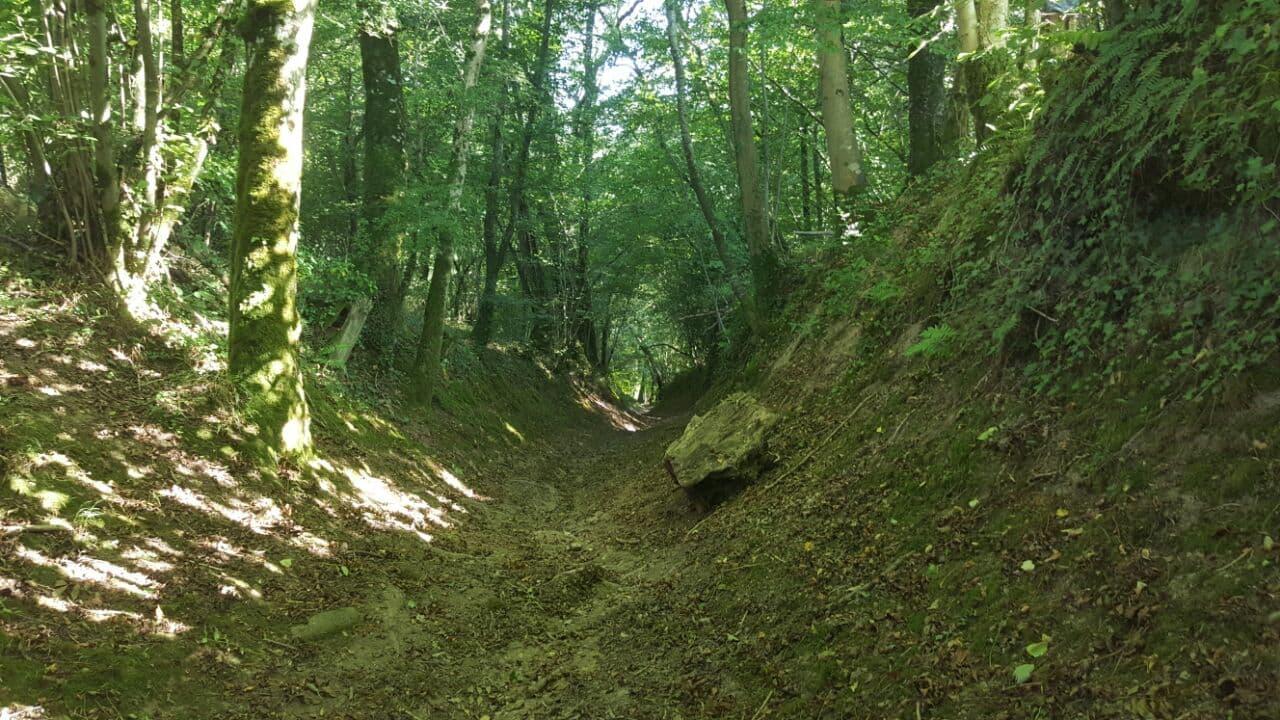 SLope down to the Cresme Valley, Perigny, Calvados, Normandy