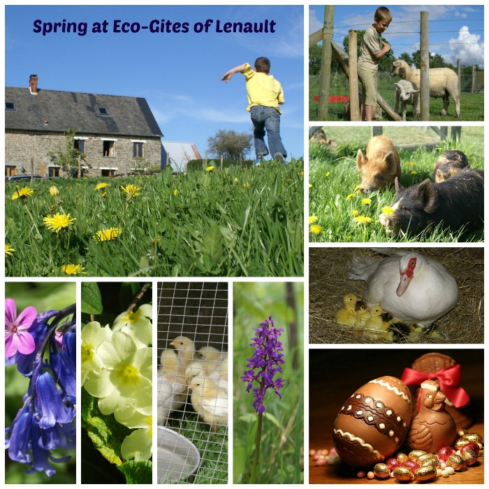 Book a Spring Break at Eco-Gites of Lenault in Normandy