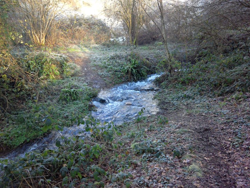 The stream near Eco-Gites of Lenault, Normandy, France