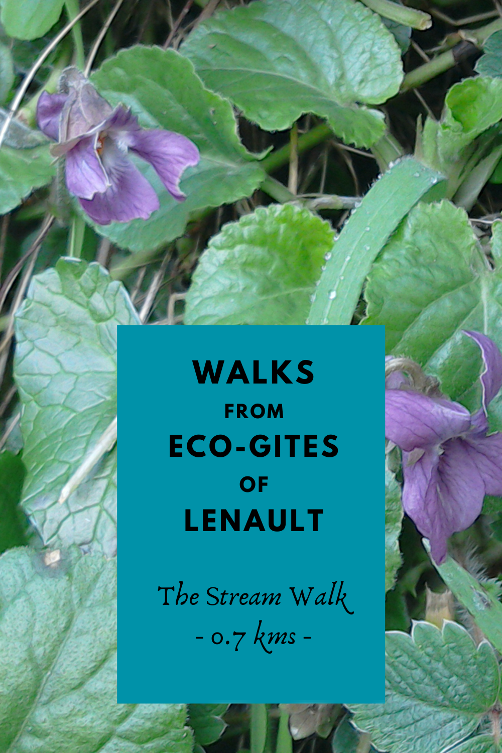 Route for the Stream Walk, Eco-Gites of Lenault, Normandy, France
