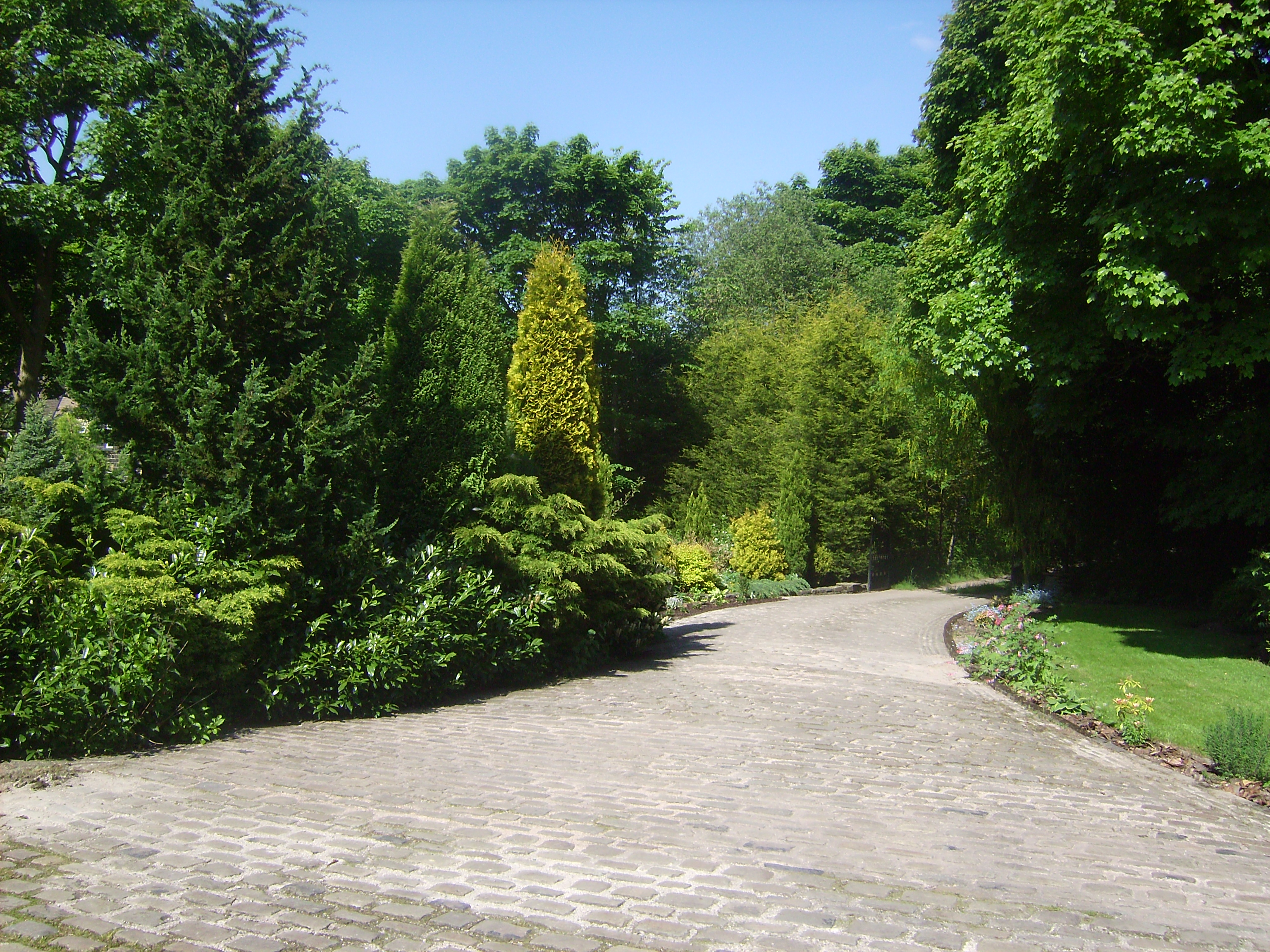 Driveway from the cottage