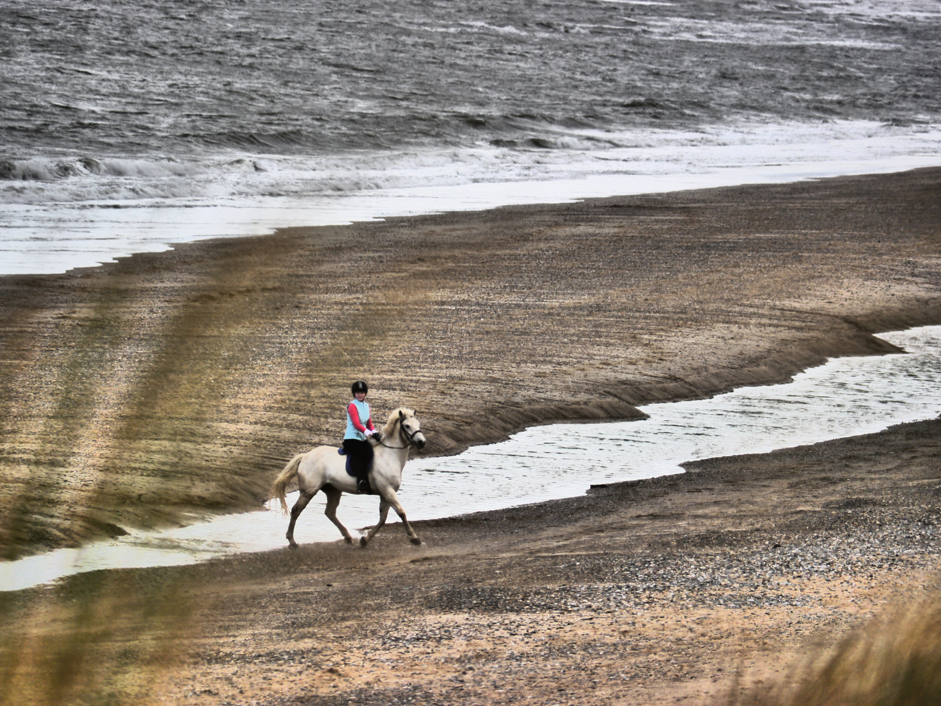 Wicklow Horse Riding Image