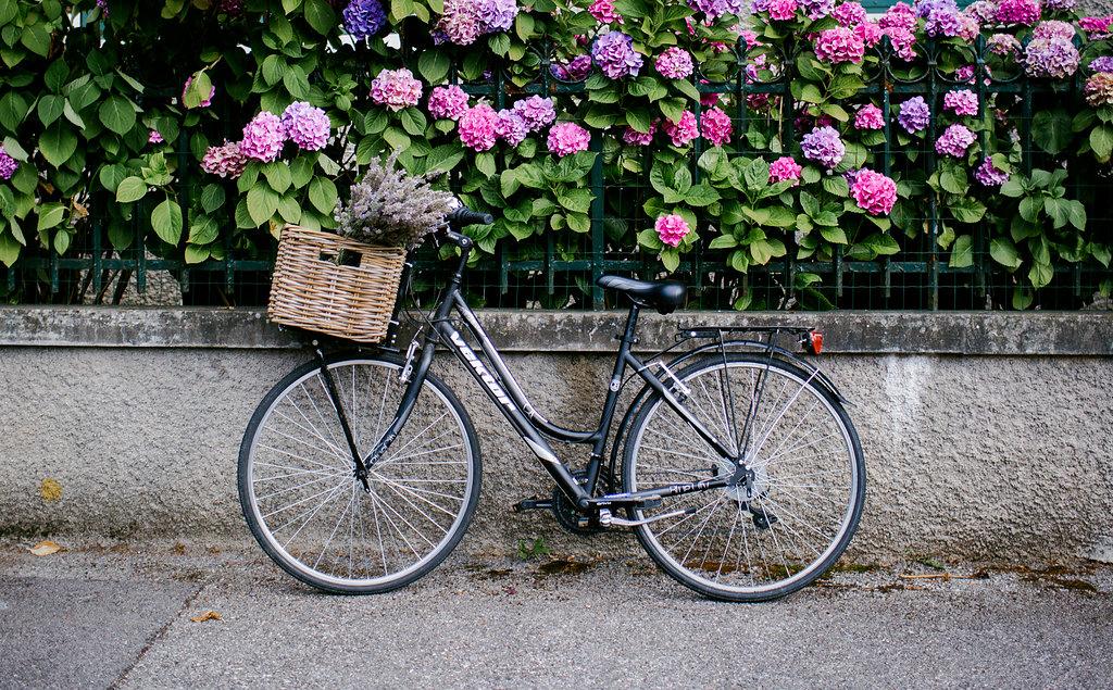My Sweet Home biking like a French