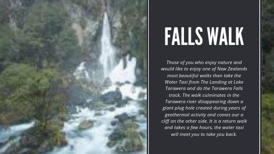 Tarawera Falls Walk