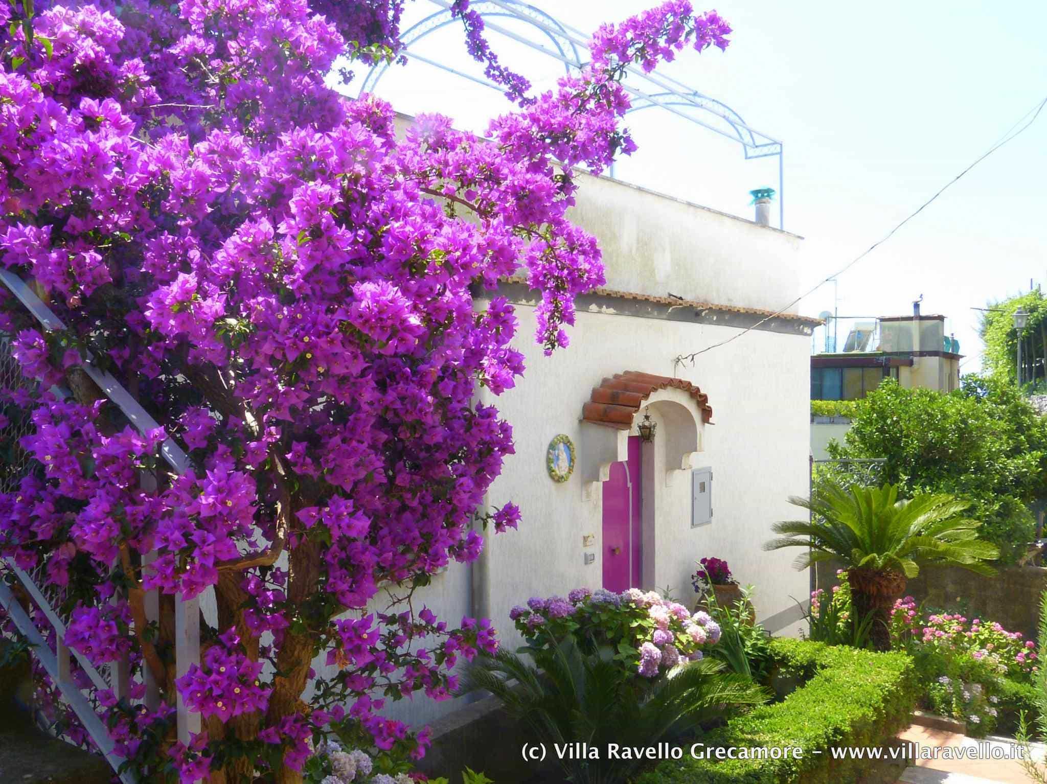 Villa Ravello Grecamore - main entrance