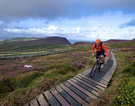 Mountain Biking Isle of Man