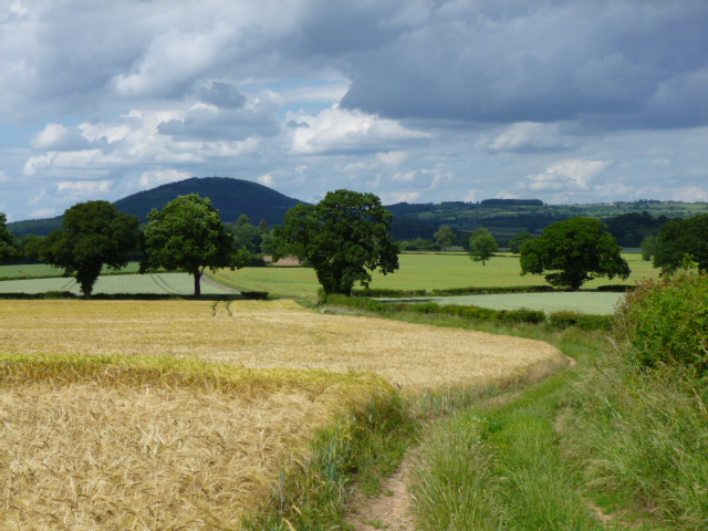 The Shropshire Countryside