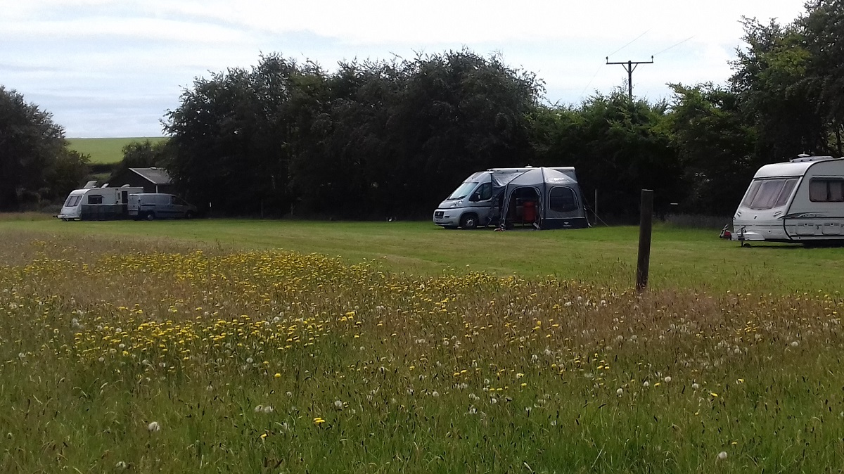 grass camping pitches